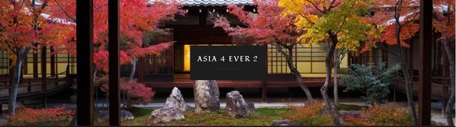 asia 4 ever 2