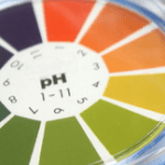 レッドビーシュリンプ飼育のための『濾過バクテリア』:活動の条件