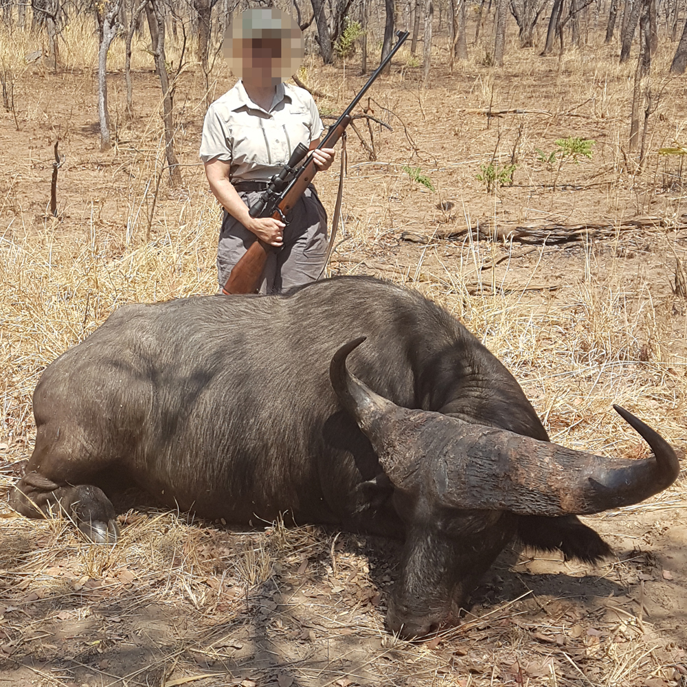 hunting Buffalo - Nsonga Game Management & Lodges