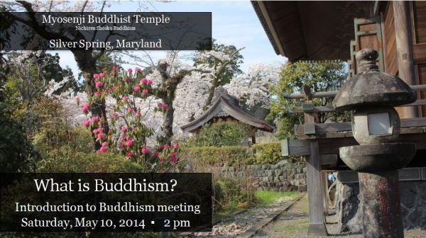 Buddhism, Mother's Day and the Lotus Flower | Myosenji ...