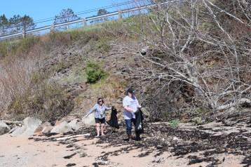 Digby Beach Sweep 3