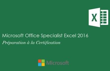 Excel 2016 Niveau Spécialiste