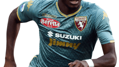 Photo of Super Eagles' Aina joins Fulham on season-long loan
