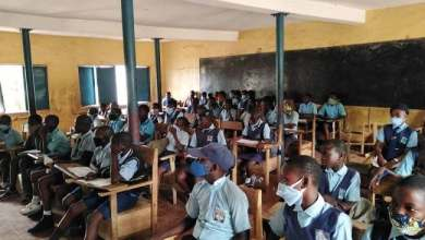 Photo of USAID Advocates Use Of Mother Tongue In Early School Learning In Gombe