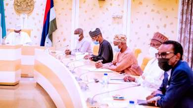 Photo of We 'll develop our Irrigation Facilities more, Buhari assures