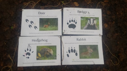 Winter wildlife track prints to be found around the Woodland Play Area.