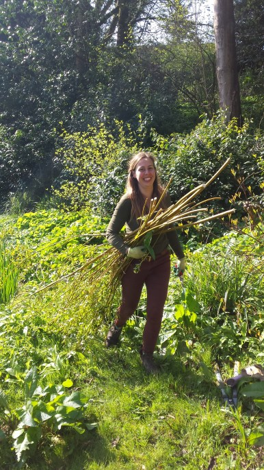 Alice CArrying a bundle of coppiced willow