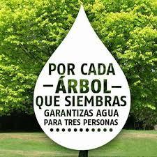 Planta & Canta - Sin agua morimos, sin árboles no hay agua, o sea...    Facebook