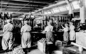 Estados Unidos cambió el curso de la Primera Guerra Mundial | ShareAmerica