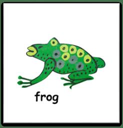 C:UsersSAVIDownloadsfrog .png