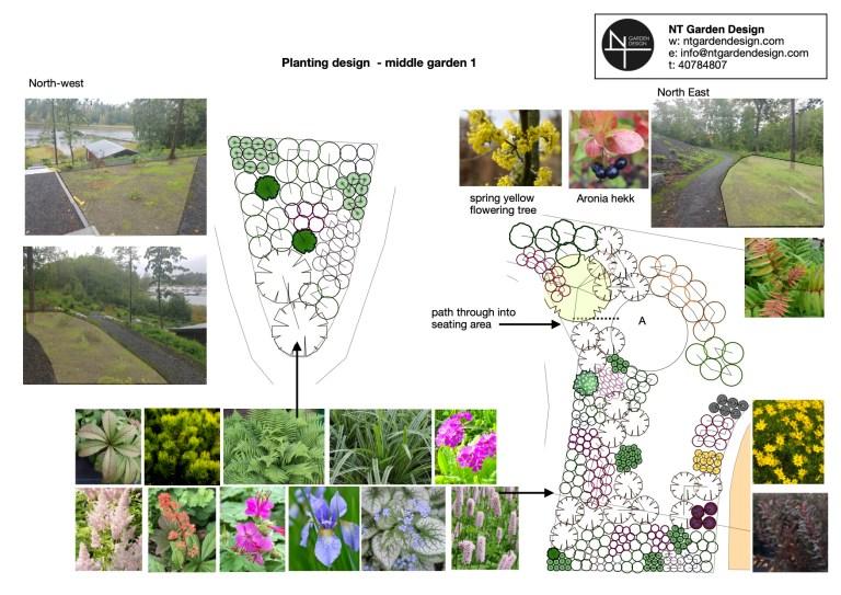 En plantegning som viser planter i posisjon