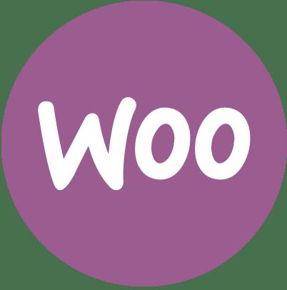 Maintenance et Mise à jour Wordpress 1