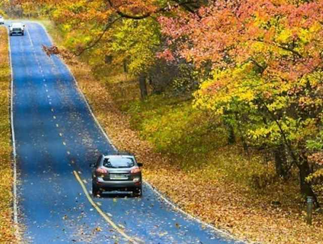 Want to See the Best Fall Colors? Here's Where to Go