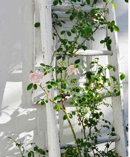 Use an old ladder to decorate your entrance in a shabby-chic way.