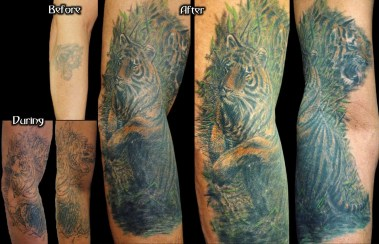 tigercoverup