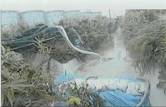 Rainwater flowing over sandbags at Fukushima Daiichi Sunday. Source: TEPCO