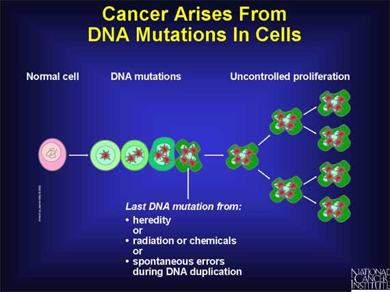 Νέα μελέτη για τις καρκινικές μεταλλάξεις