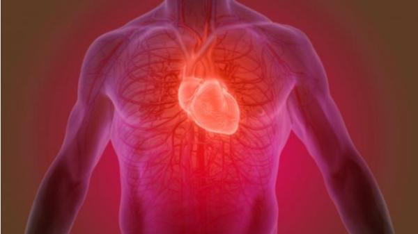 "Widow Maker: Η καρδιακή προσβολή που λένε ότι ""δημιουργεί χήρες""!"