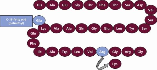 Αρνητική επίδραση στην χοληδόχο κύστη των πασχόντων απόδιαβήτη τύπου 2 που λαμβάνουν την δραστική ουσία λιραγλουτίδη (Liraglutide) διαπιστώνει νέα μελέτη