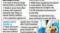 Μυκητιασική λοίμωξη αποδεικνύεται θανατηφόρα για ορισμένους αναρρώσαντεςασθενείς Covid