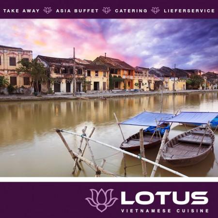 Lotus_Vietnam_Schlieren21