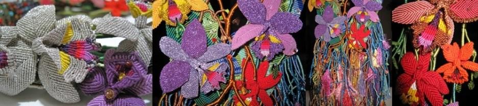 Pais de Orquídeas-crop