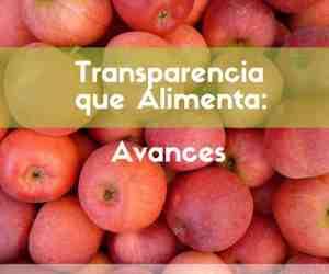 """""""Transparencia que Alimenta"""": el nuevo proyecto de transparencia pública que coordina Nuestra Mendoza"""