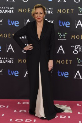 celebrities_alfombra_roja_rosa_premios_goya_2015_cine__944441784_800x