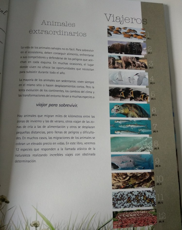 abertura del libro viajeros de la editorial kalandraka