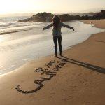 Costa Oeste: Ballenas en Monterrey & Big Sur