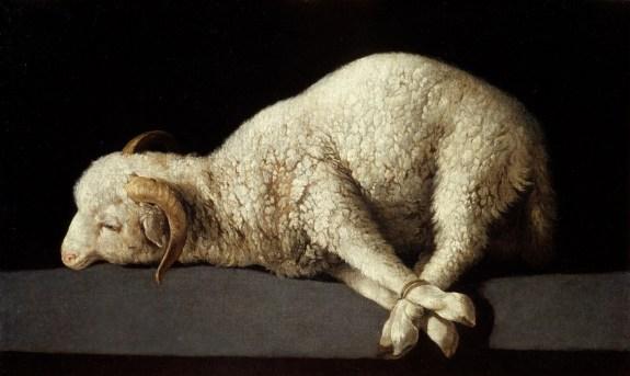 Agnus Dei ; de Zurbarán, pintura que se expondrá hasta el 31 de marzo en el Museo de Bellas Artes de Houston. Foto: MUSEO DEL PRADO/BBVA