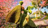 Disney Anuncia un Nuevo Concepto: Disney Springs