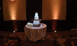 Wedding Cake Pinspot Lighting
