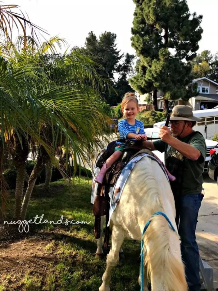 Cowgirl Birthday Riding Horse