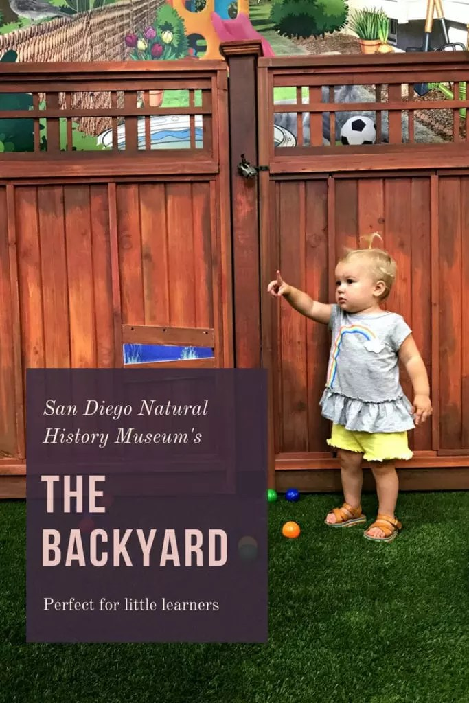 Traveling with kids to San Diego then add The Natural History Museum to your list. The Backyard exhibit is perfect for kids 0-5 years old, giving them a space to explore and learn about the natural world. Located in Balboa Park, there are plenty of things to do in the area, walking distance to restaurants, activities, museums and the San Diego Zoo. Centrally located close to hotels, downtown and La Jolla, perfect addition to any vacation.  #sandiego #museum #travel #vacation #kid #balboapark