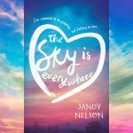 The Sky Is Everywhere Jandy Nelson Book Review