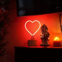 Gingersnap Neon Heart Lamp Review