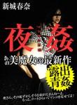新城春奈 夜姦 8 〜淫らな美魔女〜