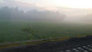 Pengalaman Naik Kereta Api Logawa dan Pasundan: Rute Purwokerto - Surabaya - Berangkat Pagi