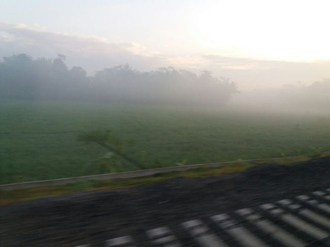 Pemandangan dari Dalam Kereta Api Logawa