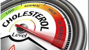 Cara Menjaga Kolesterol