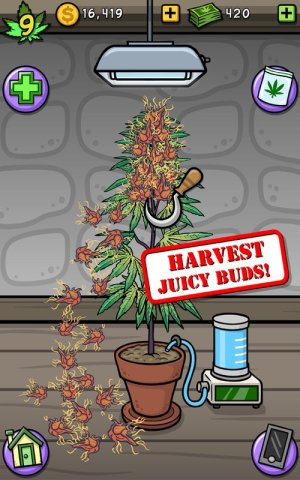 Pot Farm Grass Roots Game Android Free Download