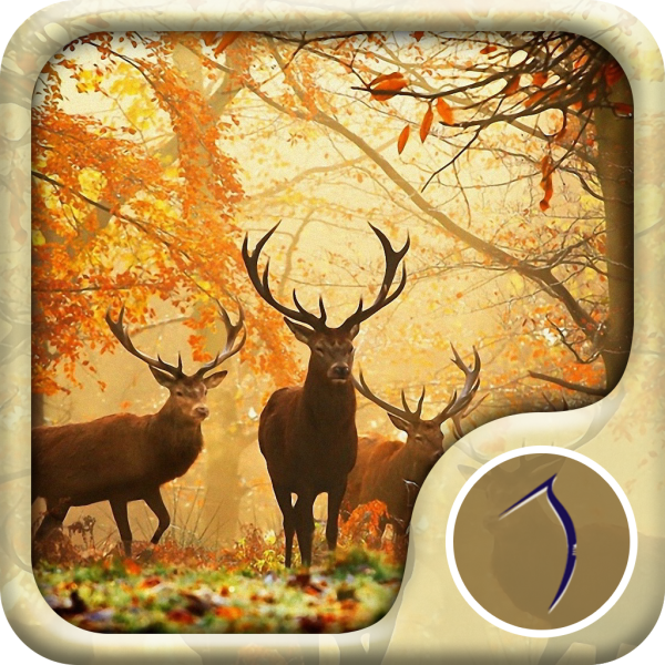 Autumn Wallpaper: Best HD Wallpapers App Ios Free Download By Null48.com Free Download Android & Ios Software And Games You Can Download Files Direct Link Download For Free.