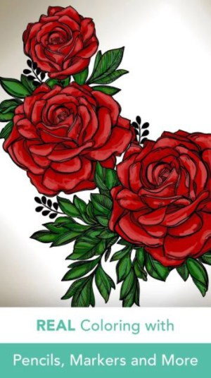 Pigment App Android Free Download