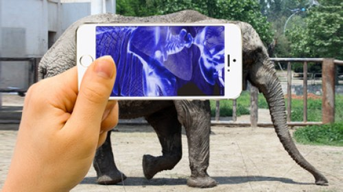 Xray Animal Scanner Ipa App iOS Free Download