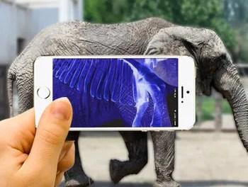 Xray Animal Scanner Ipa App iOS Free Download