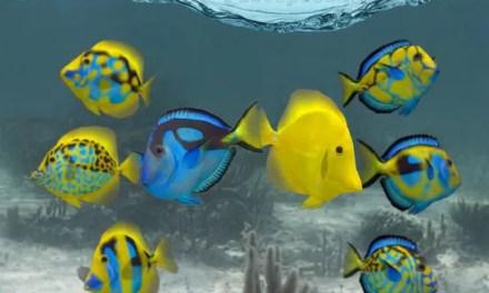 Fish Farm 2 Ipa Games iOS Download