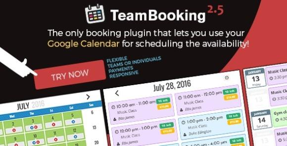 Team Booking WordPress Booking System Plugin