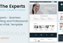 The Experts V1.0 – Business Consulting And Professional Services HTML Template 14