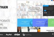 TIGER v101.1.8 - Social Network Theme for Companies & Professionals 10